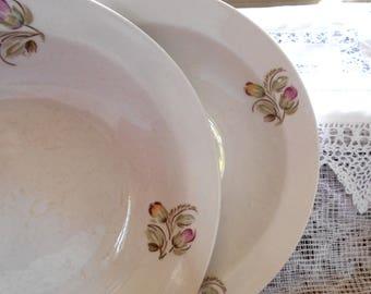 Vintage soup plates Russian collection Antique soup plates Retro dinnerware Floral vintage plate Soviet vintage dishes Retro dinner plates