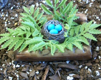 Wood look planter with ferns and miniature bird nest and eggs: Fairy or miniature gardens and terrariums