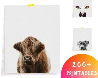 Farm Animal Prints, Farmhouse Decor, Highland Cow, French Country Decor, Animal Printable art, Rustic Wall Art Decor, Farm Animals