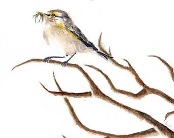 Little Bird - watercolour fine art print