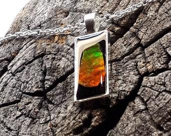 Ammolite, Ammolite Pendant, Ammolite Jewelry, Ammonite, Necklace
