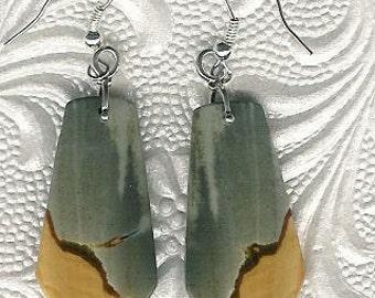 Earrings - Succor Creek Jasper, Sterling Silver Gemstone Jasper Natural