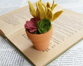 Tiny Felt Succulents in a Clay Pot - Teacher Gift - Hostess Gift - Mother's Day Gift - Succulent Ornament - With or Without Hanger