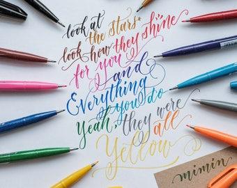 Pentel fude touch brush pen x 12 colours