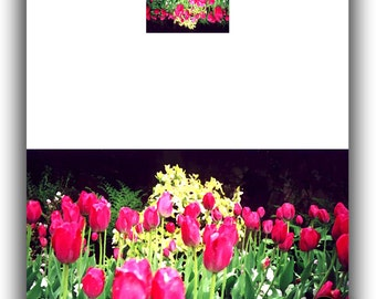 TULIPS Original Digital Card by Dora Martinez