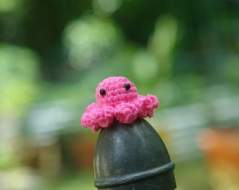 Pinky the Octo Baby