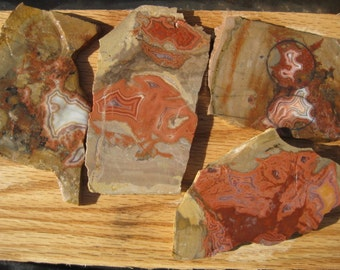 Teepee Canyon Agate / 4 specimens - Free shipping usa