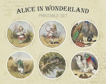 Alice Vintage Set