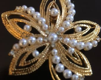 Gold Pearl Star Pin