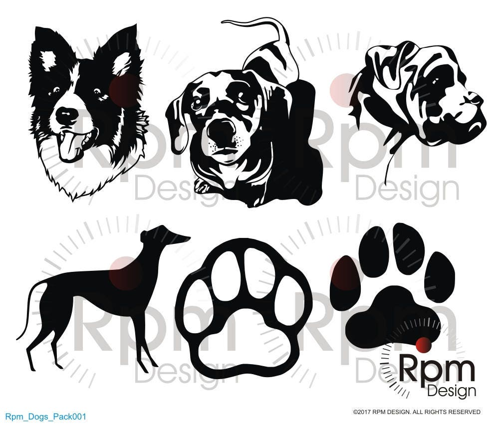 Download Dogs SVG File, Dogs Cut, Border Collie SVG, Dacshund ...