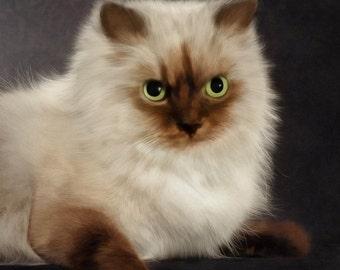 Custom Cat Portrait, Cat Loss, Kitten Digital Painting, Cat lover gift, Cat Memorial, Gift for Mom, Free Shipping!