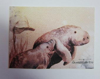 Manatees Mother's Love ACEO watercolor print 955 Artist Trading Card pink peach Florida