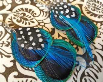 SERENA in Peacock Blue Feather Earrings