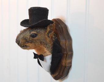 Bride and Groom Taxidermy Mounts for the couple who has everything!