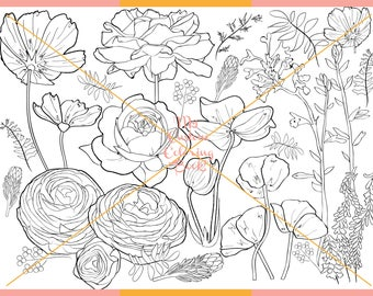 Download a 2nd Floral Coloring Page