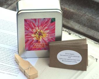Heirloom Zinnia Seed Kit, Garden Gift Set, Zinnia Seeds, Butterfly Garden Flowers, Great Gift for Mom or Hostess Gift