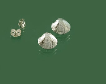 Shell stud earrings in 925 sterling silver