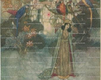 5 Vintage RARE Fairy Tale Art Prints by Edmund Dulac Instant Digital Download