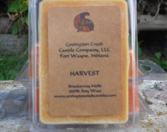 Harvest Pure Soy Breakaway Melt. Fall Scent, Kitchen Scent, Halloween Scent, Thanksgiving Scent Scentsy