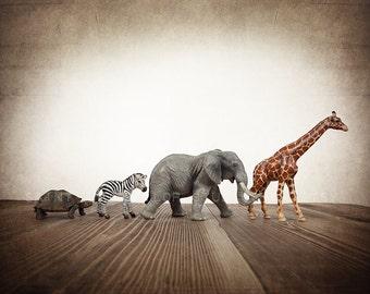 Safari animal photo Turtle, Zebra, Elephant and Giraffe line, Nursery Decor, Baby animal art, Baby room ideas,