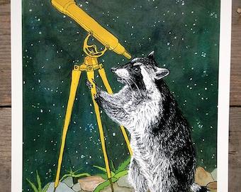 Raccoon and Telescope Print