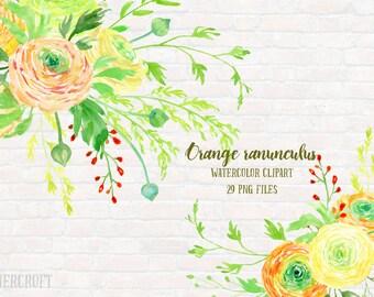 Watercolor Clipart Orange Ranunculus - Orange Ranunculus, orange flowers, yellow ranunculus and decorative elements for instant download