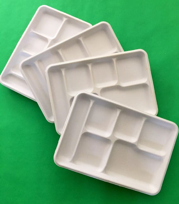 Divided Food Trays Set Of 10 White Fiber Paper Plates