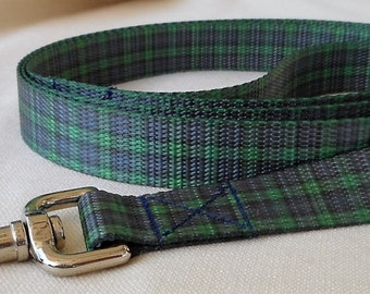 Blue and Green Polyester Webbing Leash