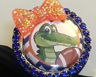 Florida Badge reel, gators id green and orange college themed colors, nurse name tag lanyard retractable RN gift holder medical bling id