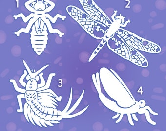 Insect vinyl stickers decals - mayfly - dragonfly - larvae   Science
