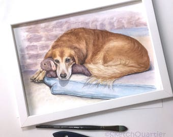 Custom Original Art painted pet portrait in Watercolour from your photographs. Pet memorial.