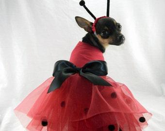 Lady Bug dog costume with headband XXS-M & Ladybug dog costume | Etsy