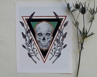 Skull Study I- PRINT