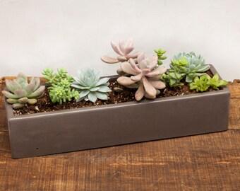 Concrete Planter, Succulent Planter, Concrete, Planter, Outdoor Planter, Indoor Planter, Cement Planter,  as shown in Carbon