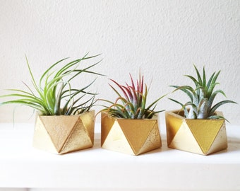 Geometric planters, tiny planter, air plant container, wedding favors