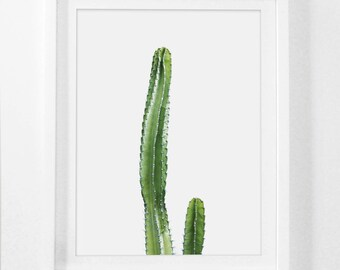 Cactus tirages, impression de Cactus, imprimable, jardin d'Art, photographie de désert, Cactus vert Decor, désert Photo, impression botanique, Cactus Art