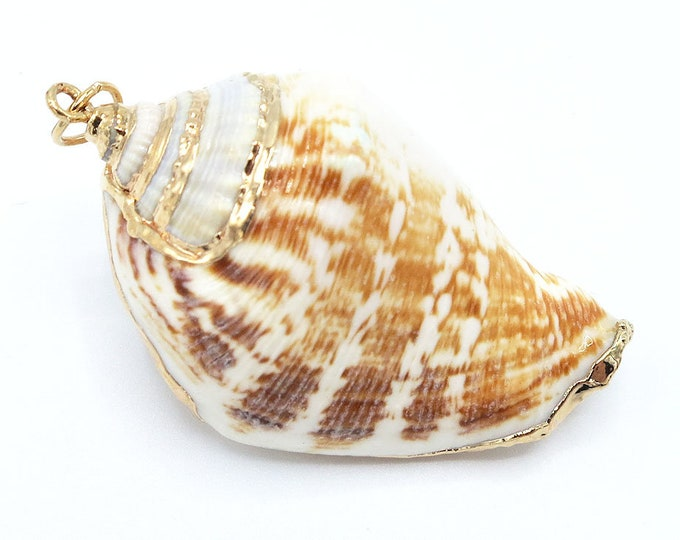 Shell pendants beadsshopusa 1 piece gold plated natural sea shell trumpet conch pendant bead 42x24x18mm aloadofball Choice Image