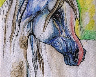 Grey arabian horse, equin eart, equestrian, horse portrait,  watercolor painting