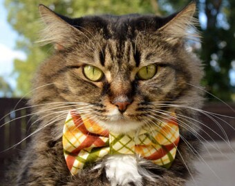 Fall plaid bow tie for cat? fall cat collar, plaid cat collar, Autumn cat collar, cat collar, tie, bow tie for cats, kitten collar