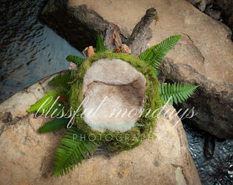 Moss and Fern Nest - Tiny stream