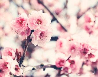 Flower Photography - Nursery Photograph - Pink Cherry Blossoms Photograph - Flowers - Fine Art Photography Print - Pink Tan White Home Decor