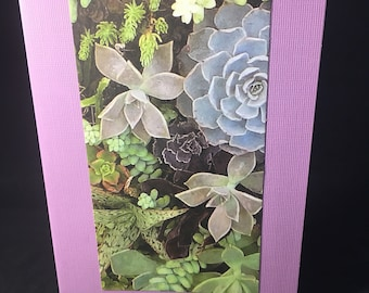 Succulent Card  Purple Note card - Blank inside