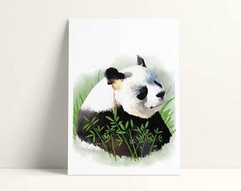 Illustrated postcard - 12, 7 x 17, 8 cm - panda