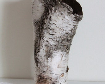 """Natural Birch Bark Sleeve for Crafting, Flower Arranging, Hollowed Naturally by Decay, Beautiful Natural Birch Bark, Betula Bark """"A"""""""