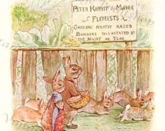 Flopsy Bunnies Instant 5x7 Digital Download 1909 Beatrix Potter Art Print