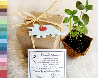 5 Dinosaur Birthday Party Favors - Plantable Paper - Baby Shower Favors - Personalized with Plantable Pots