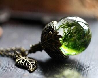 Moss acorn necklace, dry plant pendant, acorn locket , gift from Ireland , Irish jewelry,  terrarium jewellery , botanical nature jewelry