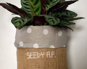 Seedy A.F. natural + polka dot