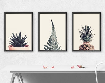 Printable Tropical Plants Art. Aloe, Fern and Pineapple SET OF THREE. Download instantly and print today.