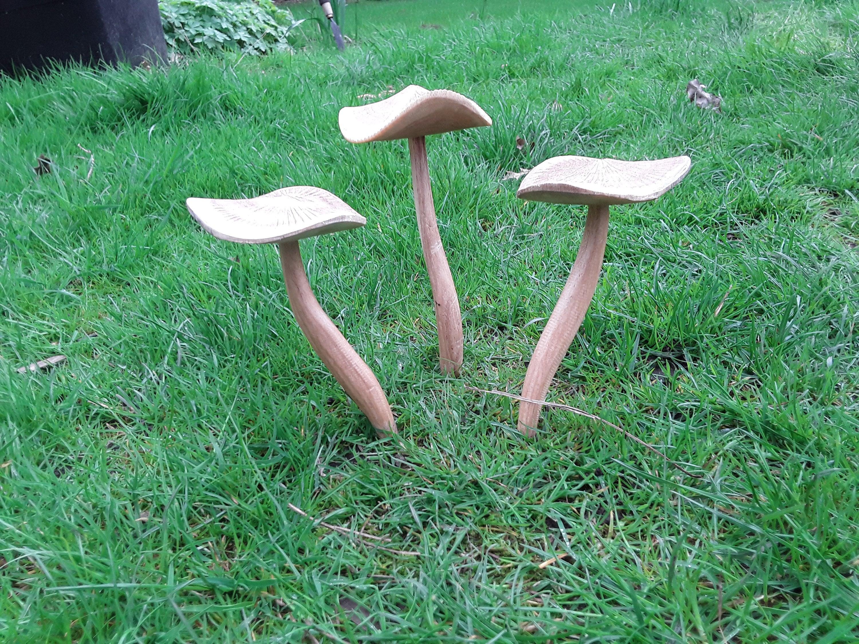 wooden fairy garden mushroom set